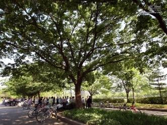 공원 내 쉼터 역할을 하는 녹지 공간