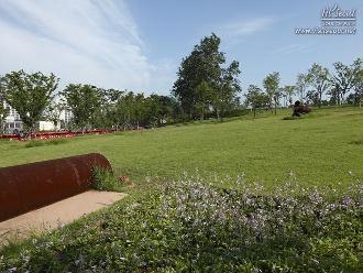 푸른 잔디가 아름다운 '열린풀밭'