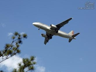 공원 위로 날아가는 항공기