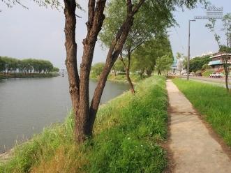 강변의 서래섬과 나란한 산책로의 전경