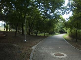 양재 시민의 숲 산책로