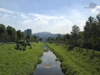 양재 시민의 숲 수로