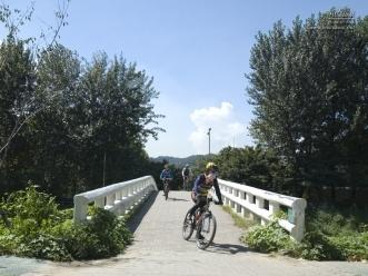 양재 시민의 숲에서 자전거를 즐기는 시민들
