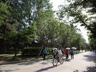 보라매공원 산책로