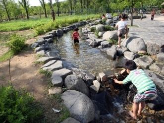보라매 공원 생태 연못에서 물놀이하는 아이들