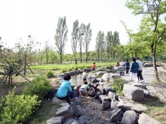 보라매공원 생태 연못