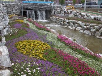 성내천 꽃밭