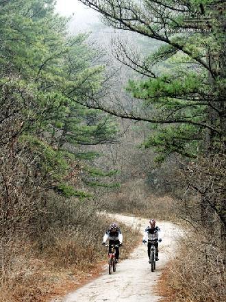 자전거 타는 시민들