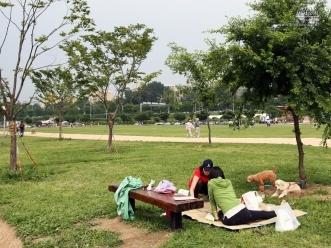 공원 잔디밭에서 한가로운 시간을 보내고 있는 시민들