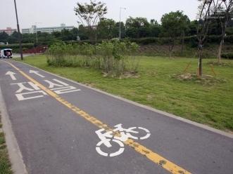 바닥 자전거 도로 표시