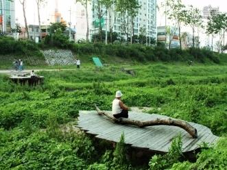 증산교 인근 나뭇잎 모양의 눕는 데크