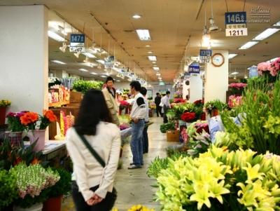 양재꽃시장